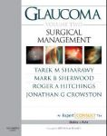 Glaucoma Volume 2: Surgical Management: Expert Consult: Online and Print  Производитель: